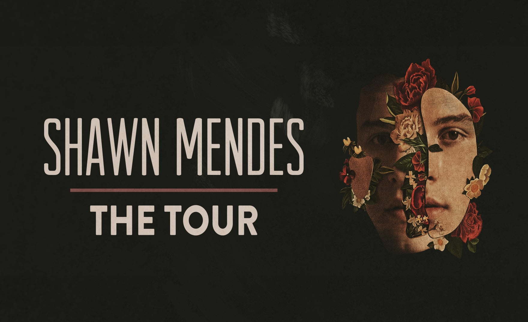 shawn mendes tickets meet and greet