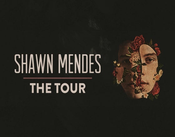 Shawn Mendes The Tour Ppg Paints Arena